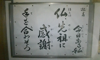 20110107-20110103210330.jpg