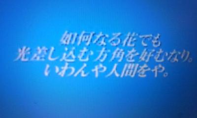 20110319-20110204010235.jpg