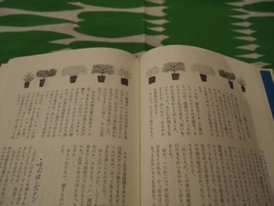 20110327-sutekina.jpg