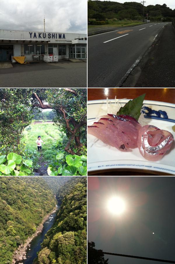 20120425-yakushima01.jpg