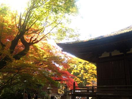 20131114-ishiyamadera2.JPG