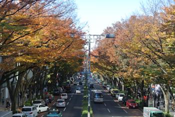 20131121-iroiro.jpg