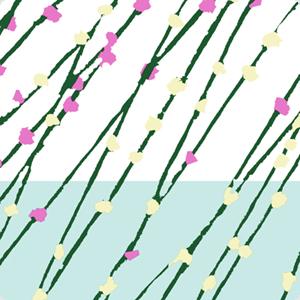20110418-20101229-20110108mochibana_300.jpg