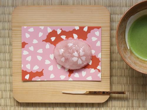 20110428-takeuchi.jpg