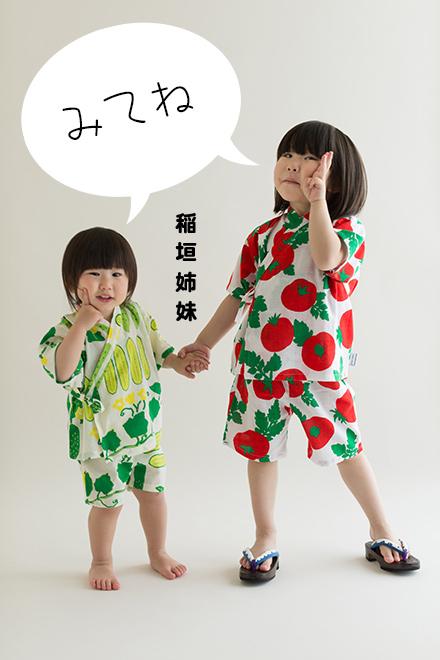inagaki_sis