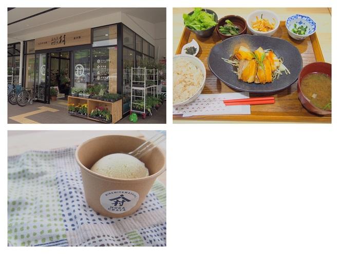 furusachi3